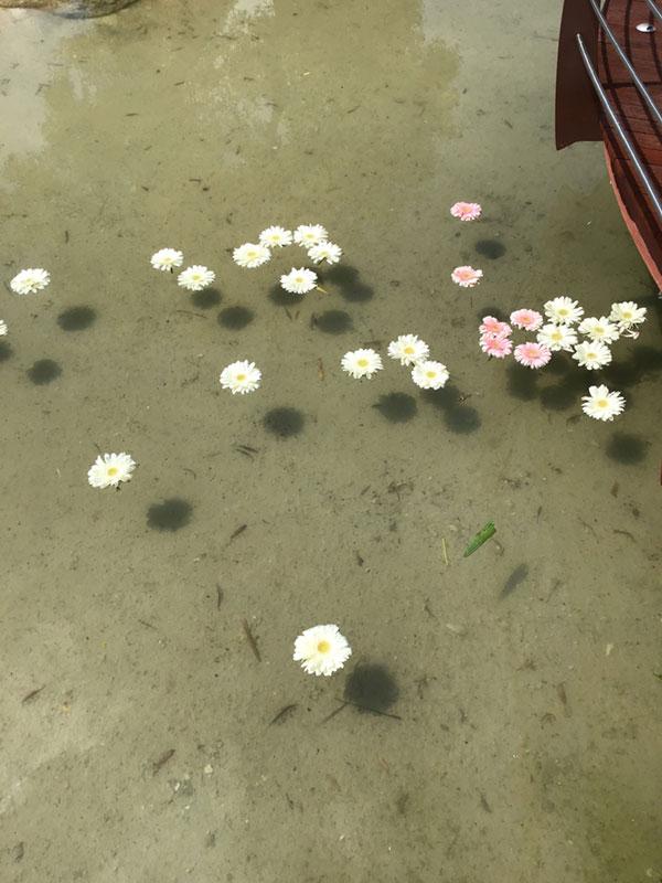 Atelier-Flower-Shop-F-40-cropani-matrimonio-07